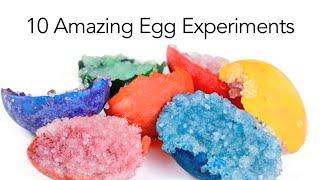 10 Amazing Egg Experiments - Steve Spangler Science