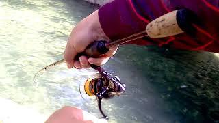 Рыбалка в чирали турция