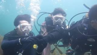 トリトンダイビングリゾート(ToriTon Diving Resort)