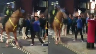 video: Football fan arrested for 'punching a horse' after Portsmouth-Southampton derby
