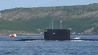 Проект лодки палтус