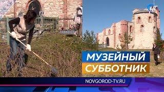 Сотрудники новгородского музея очистили Рюриково городище после зимы