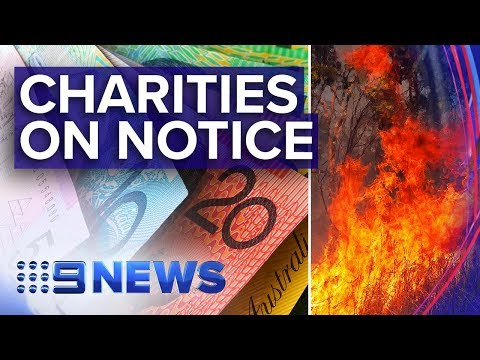 Bushfire charities warned by regulators | Nine News Australia