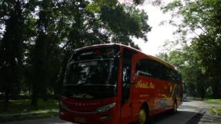 Konvoi bus Jambore Nasional Bismania Community 2016 part 5 | BMC Malang