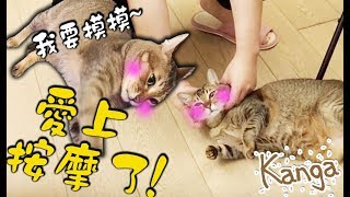 Kanga愛上按摩不停討摸了~ [ Kanga Vlog #12]