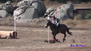 Jess Hargrave & Reginald: Copper Meadows CIC** Cross Country