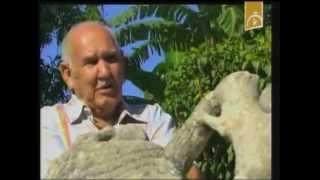 preview picture of video 'Zoológico de Piedras en Guantánamo'