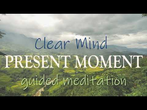Clear Mind Present Moment 10 Minute Mindfulness Guided Meditation