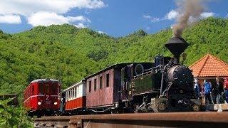 Čiernohronská železnica  Waldbahn In Čierny Balog, Slowakei  Feketegarami Vasútvonalon