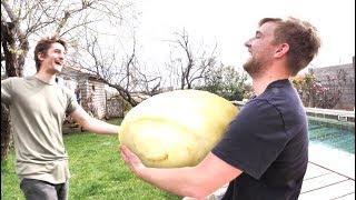 法国小哥自己做了一个20斤的馒头! 不可思议! !