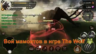 Вой мамонтов в игре The Wolf 🐺 игра game можно смотреть мультфильмы онлайн мультики для детей