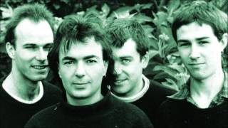 The Chills - Rolling Moon (Peel Session)