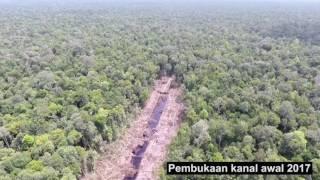 VIDEO <a href='https://indopos.co.id/video/2019/02/19/165952/penindakan-pelanggaran-kawasan-ekosistem-gambut-iuphhk-pt-mpk-23-maret2017'>PENINDAKAN PELANGGARAN KAWASAN EKOSISTEM GAMBUT IUPHHK PT MPK 23 MARET2017</a>