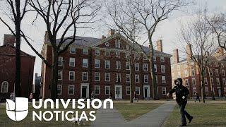 SUGAR - Escándalo de sobornos por el azúcar, o sugar-gate, salpica a la Universidad de Harvard