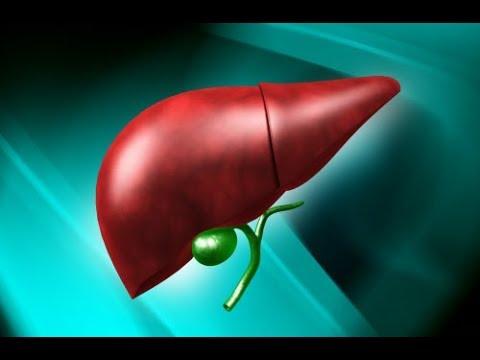 Симптомы гепатита б острый