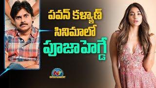 Pooja Hegde in Pink Telugu Remake | Pawan Kalyan