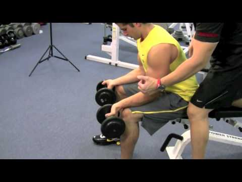 SEATED DUMBELL WRIST CURLS