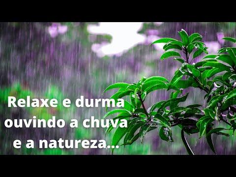 Relaxe e durma ao som da chuva e pssaros, incrvel  (Relax to the sound of rain and birds, amazing)