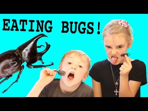Kids Bug Eating Challenge! Crickets, Meal Worms, Rhino Beetles, and more!