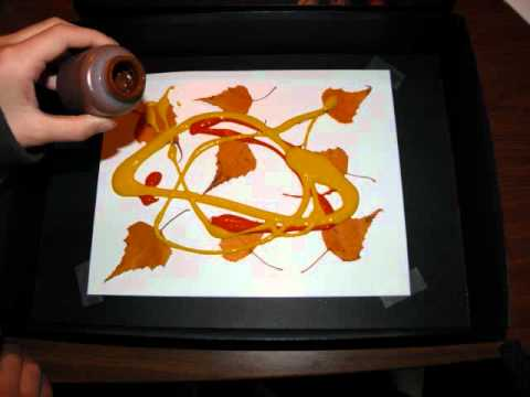 Screenshot of video: A great autumn sensory activity