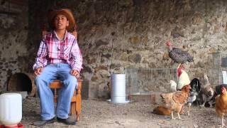 """Proyecto """"Huevo De Rancho"""" PUE. Triciclo Films"""