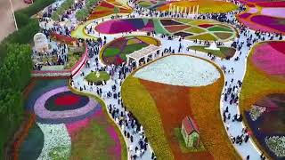 preview picture of video 'Yanbu flower show in ksa'