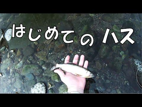 "HD] My First Three Lips Fly Fishing. ""Flyfisher's eyes. No.37"""