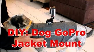 DIY: How to Make a Dog GoPro Jacket Mount