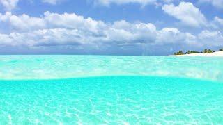 Best Beach in The Caribbean: 1 Hour 4K Nature Video & Relaxing Ocean Waves