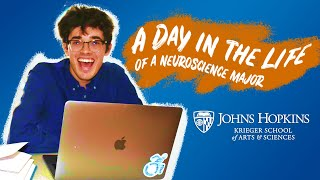 A Day in the Life of a Neuroscience Student
