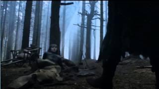 302- Trailer
