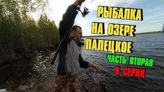 Палецкое озеро рыбалка отзывы