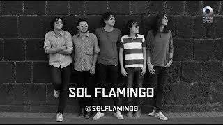Bandas en construcción - Sol Flamingo