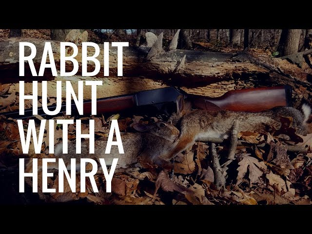 Rabbit Hunt with a Henry .410 Lever Action Shotgun