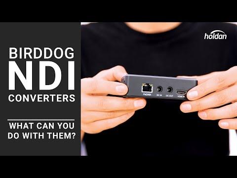 BirdDog NDI Encoders