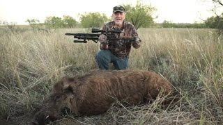 AIRGUN HUNTING: Intro to Hunting with the modern airgun