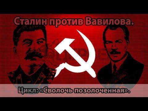 """Сталин против Вавилова. Цикл """"Сволочь позолоченная"""""""