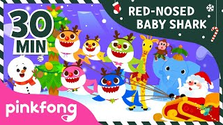 The Red Nosed Baby Shark and more | +Compilation | Baby Shark Song | Pinkfong Songs for Children