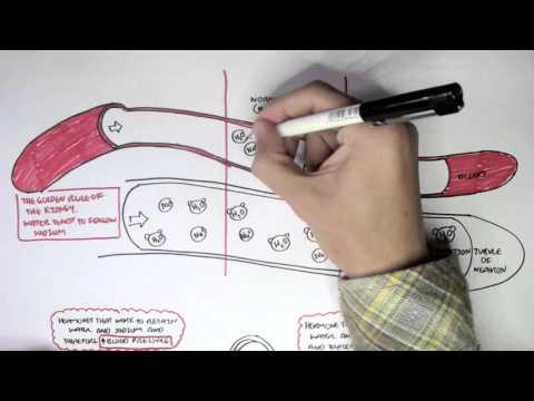 Wie zu reduzieren pulmonale Hypertonie