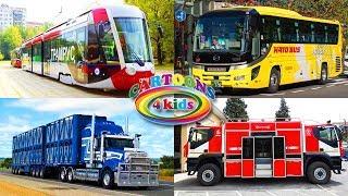 Изучаем транспорт и спецтехнику для детей. Развивающее видео для малышей
