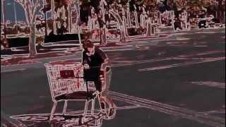 Shopping cart Joe
