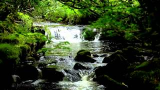 200mins. Classical Music for Studying-Relaxing Study Sounds-Sleep Relaxation