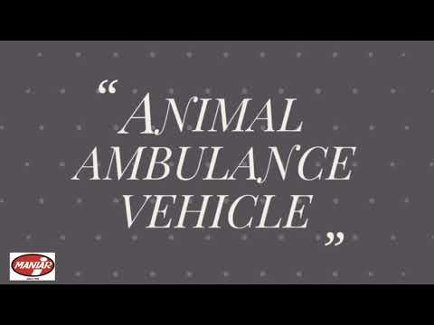 Animal Ambulance Van