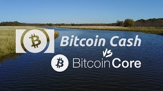 Bitcoin Cash is A Better Bitcoin | P2P Electronic Cash