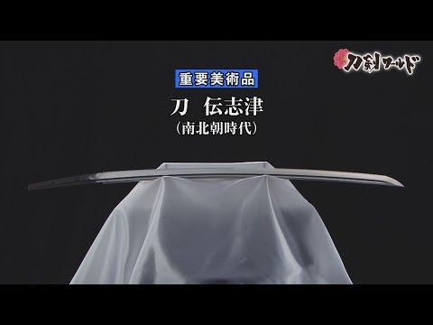 刀 無銘 伝志津(重要美術品)の動画