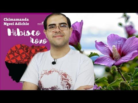 Sensibilidade e amadurecimento em HIBISCO ROXO - Resenha | Ronaldo Junior
