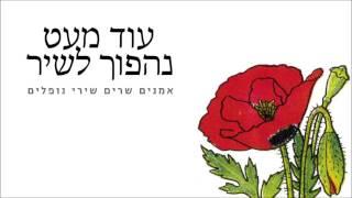 שימו את השירים הישראליים האהובים אליכם