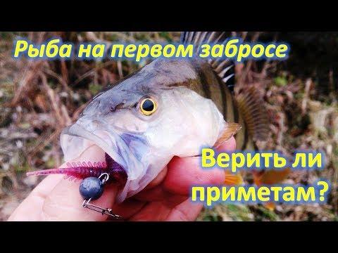 Верить ли приметам, Рыба на первом забросе.