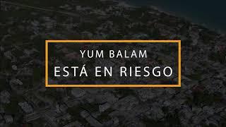 Área de Protección de Flora y Fauna Yum Balam, Cancun