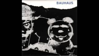 BaUhAuS   The Passion Of Lovers